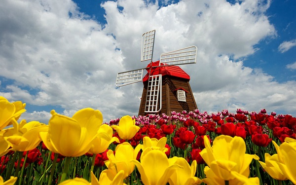 Schermerhorn-Holland