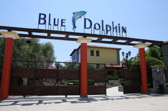 blue dolphin poza